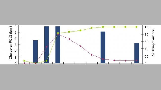 Le rapport entre le niveau (% d'animaux positifs) d'Ig M et d'Ig G est indicateur du moment où a débuté l'infection ou la circulation virale