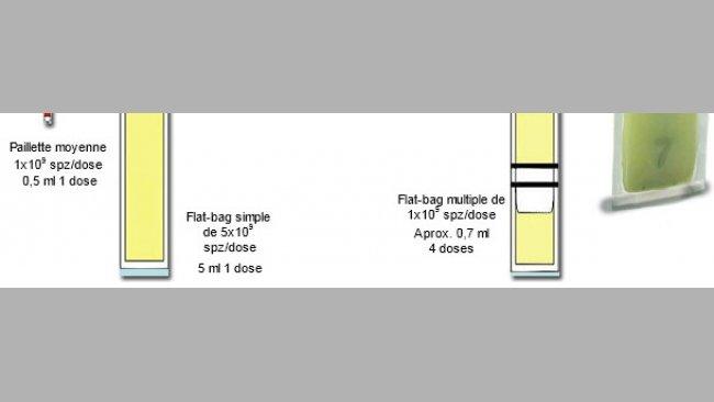 Représentation schématique des principales différences entre les mini-paillettes plastiques de 0.25 ml, avec des Flat-bags simples (5 ml) et multiples (de 0.5-0.7 ml)