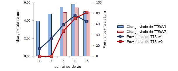 Charges virales et prévalences de TTSuV