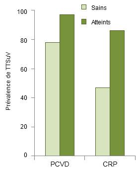 Prévalence de TTSuVs chez les porcs sains et chez les attents de PCVD et CRP.