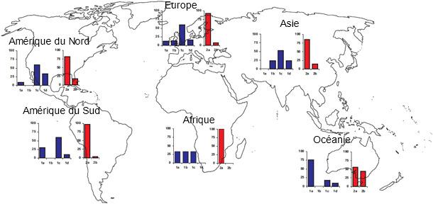 Prévalences géographiques de différentes souches de TTSuV