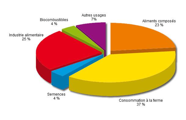 Utilisation des céréales dans l'UE-27 en 2012-2013