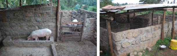 Logements améliorés à Kiambu, Kenya