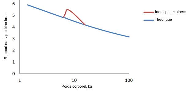 Rapport eau/protéine chez le porc de la naissance jusqu'à la finition