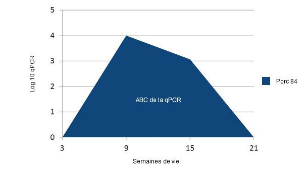 Exemple de calcul de l'ABC dans les qPCR  PCV2 sur chaque individu