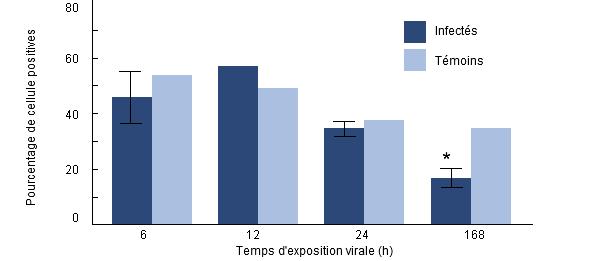 Pourcentage de phagocytose d'H. parasuis par les macrophages alvéolaires porcins prélevés sur des porcs préalablement infectés par le SDRP.