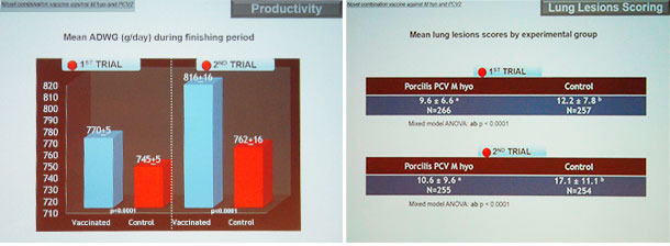Données d'essais sur le terrain renforçant les bons résultats de la vaccination avec Porcilis PCV M hyo