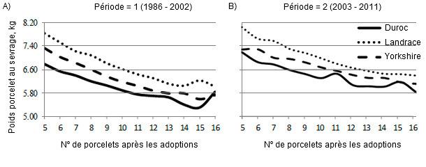 Effet du nombre de porcelets après les adoptions ou de l'ordre de mises-bas sur le poids au sevrage par race.