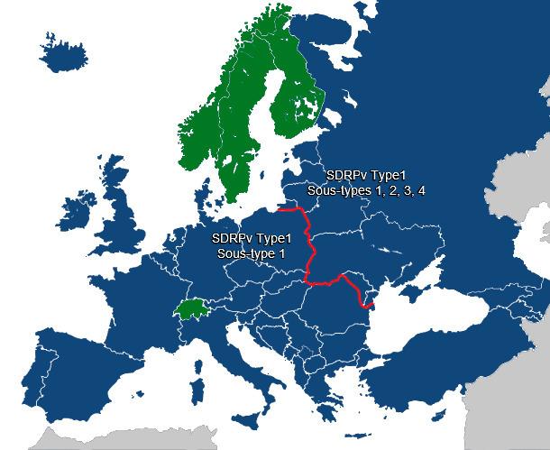 Diversidad de PRRSV en Europa