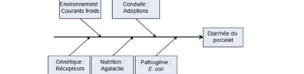 Modèle de cinq facteurs productifs comme causes de maladie.