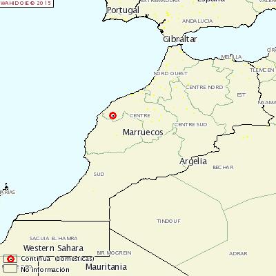 aftosa-marruecos