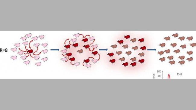 Taux de reproduction dans un contexte épídémique ou endémique