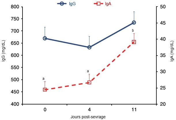 Concentraciones plasmáticas de IgG e IgA