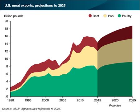 Prévisions export viande USA