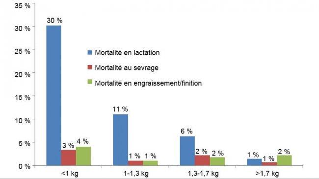 Mortalité pour chaque groupe de poids à chaque étape de production.
