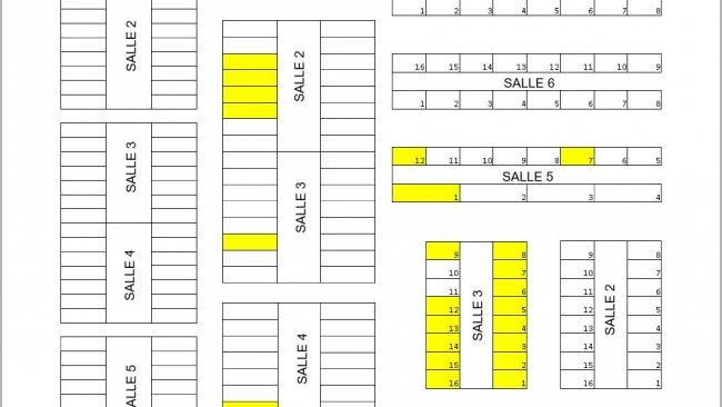 Figure1. Plan de la fermeincluant sevrage, engraissement et finition. Les enclos marqués en jaune contenaient des animaux avec marque auriculaireà l'âge de 13 semaines du lot suivi.