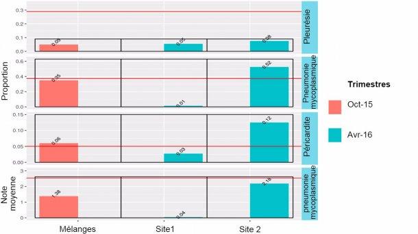 Figure 3: Résultats à l'abattoir en2014-2015 des animaux mélangés (octobre 2015) et des sites1 et 2 (avril 2016).