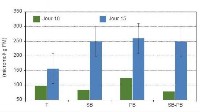 Fig. 2. Concentration d'acides gras à chaîne courtedans le digesta du colon de porcelets de 10 et 15 jours après le sevrage avec 4 régimes expérimentaux différentsa. (Adapté de Molist et al. 2009).  a Régimes: T (témoin); SB(T+ 80 g son de blé/kg); PB(T+ 60 g pulpe de betterave/kg); et SB–PB (T+ 40 g son de blé/kg et 30 pulpe de betterave/ kg). (8 répétitions par traitement).