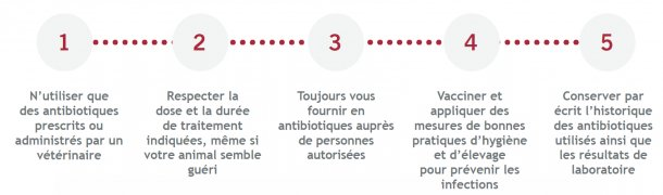 L'utilisation responsable des antimicrobiens.