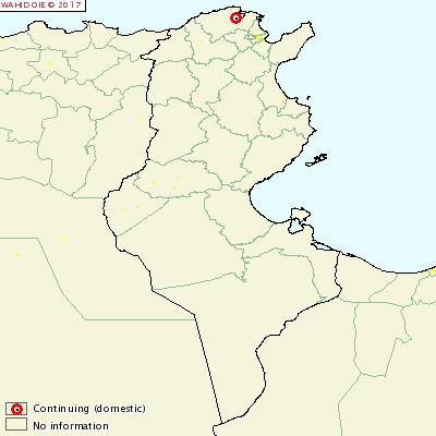 Foco de fiebre aftosa en Túnez 1