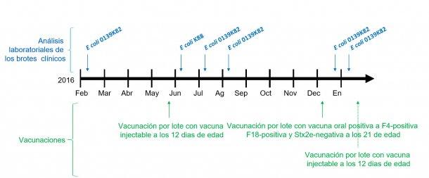 Image 1 : Analyse de laboratoire des épisodes cliniques et calendrier des vaccinations