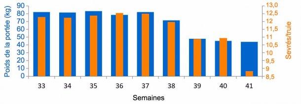 Graphique 3. Moyenne de porcelets sevrés/femelle et kg de portée, avant et pendant l'épisode de DEP (à partir de la semaine38).