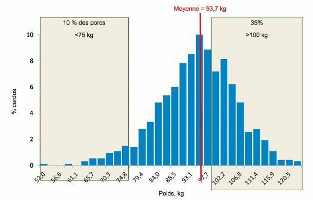 Figure 5. Distribution des poids en fin d'engraissement. 35 % des porcs pèsent plus de 100 kg alors que 10% sont en-dessous de75 kg.