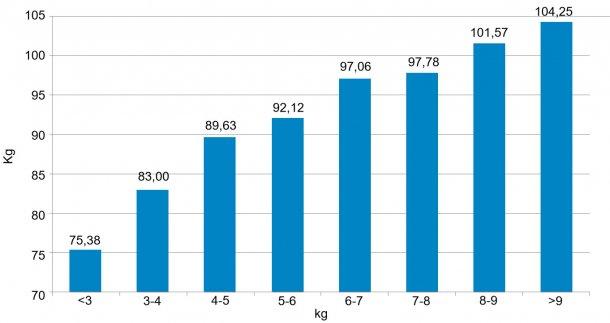 Figure 3. Répartition des animaux en fonction de leur poids (kg) à 159 jours. Les 6 kg de différence entre 5% de porcs les pluis lours et 5% de porcs les plus légers qui ont été détectés au sevrage (figure 2) sont devenus 30 kg.