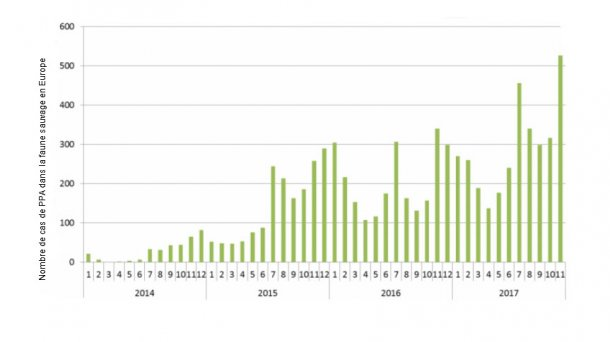 Nombre de cas de PPA dans la faune sauvage en Europe du 01/01/2014 au 29/11/2017 (Source : ADNS)