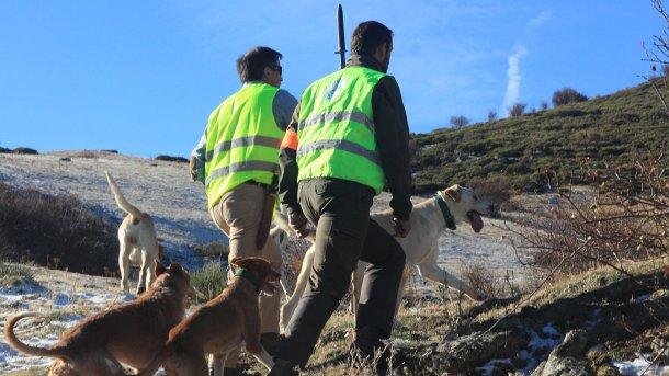 Photo 5: La chasse est nécessaire mais les chiens ne devraient pas avoir accès à l'élevage.