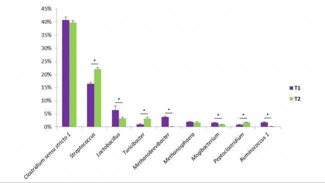 Figure 1. Quelques genres bactériens trouvés dans les fèces porcins. T1 est le témoin. T2 est un groupe traité avec un mélange de Bacillus dans l'aliment.