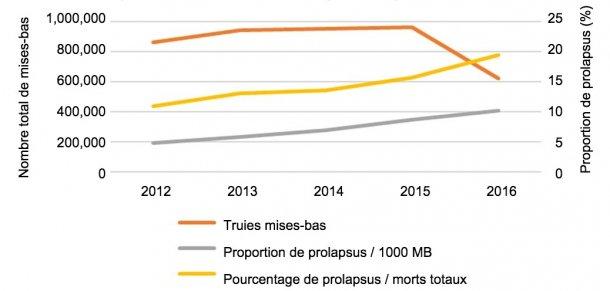 Fig.1 Nombre total de mises-bas dans l'analyse et évolution dans le temps de la proportion de prolapsus de truies sur 1000 truies mises-bas ou sur le nombre total detruies mortes dans les élevages.