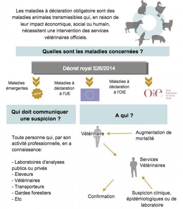 Maladies à déclaration obligatoire (adapté du MAPAMA, Espagne)