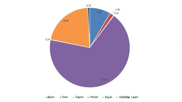 Importance des différentes catégories dans la production totale de viande