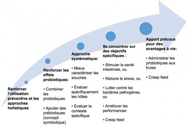 Figure 2. Stratégies visant à améliorer l'utilisation des probiotiques à un stade précoce.