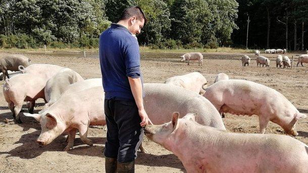 La relation qui se développe entre l'animal et la personne est complètement différente.