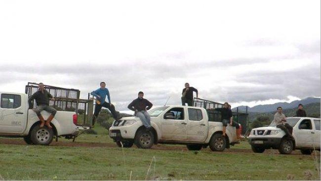 Photo 2. Le piégeage par des cages ou des enclos-pièges est une option pour agir sur le sanglier dans les zones de non-chasse, mais il est coûteux et pas toujours efficace.