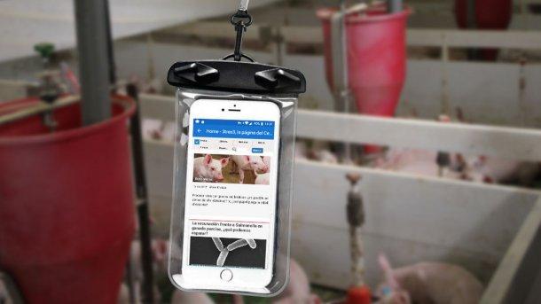 Un téléphone portable dans un sachet étanche.