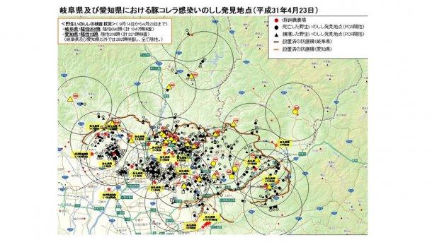 La carte indique le nombre total de sangliers, trouvés morts ou capturés, positifs à la maladie, ainsi que les élevages porcins touchés (soulignés en jaune), jusqu'au 23 avril 2019.