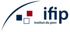 <p>IFIP</p>