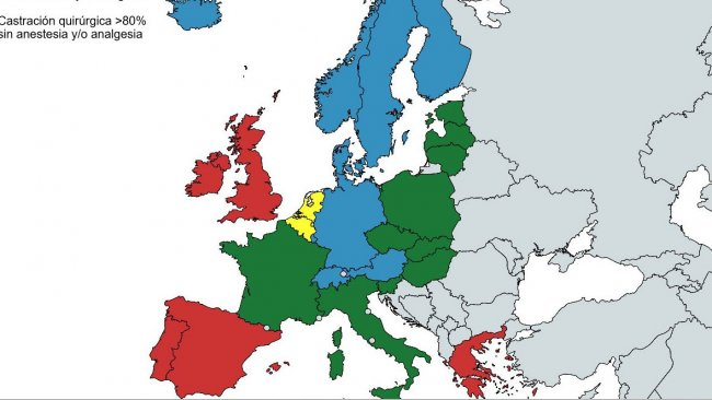 <p>Source: Second progress report 2015 &ndash; 2017 on the European declaration on alternatives to surgical castration of pigs</p>