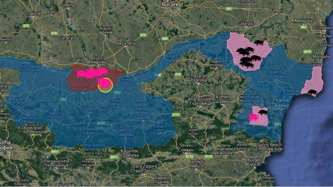 Foyers de PPA en Bulgarie depuis la première apparition de la maladie en août 2019. Chez les porcs domestiques (en rose) et les sangliers (en noir).