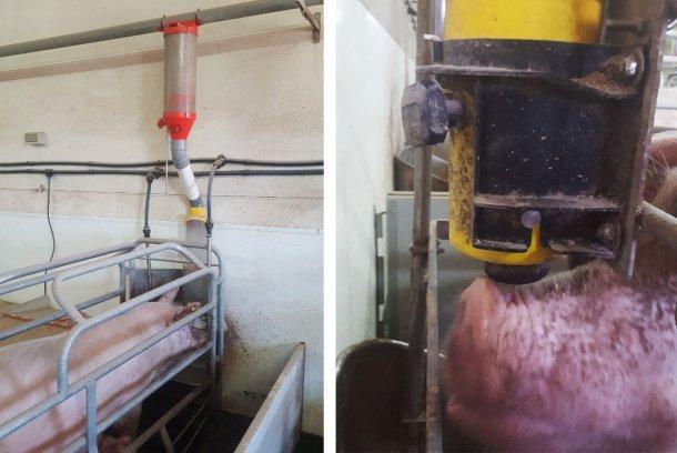 Figure 1. Ce système d'alimentation comprend le doseur, un tube de raccordement plus ou moins long, le dispositif avec la trémie et le mécanisme de bascule ou de boule.