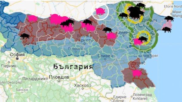Le foyer, avec 17 000 animaux sensibles, est proche de la frontière avec la Roumanie.