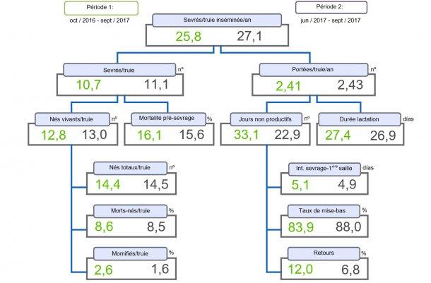 Figure 1. Arbre de productivité des porcelets sevrés / truie inséminée et par an comparée de deux périodes.
