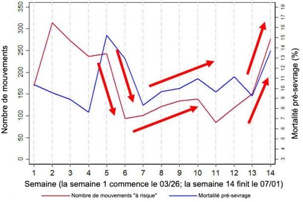 """Figure 2. Graphique illustrant la relation entre la mortalité avant le sevrage et le nombre de mouvements """"à risque"""" (définis comme mouvements vers / depuis les quais de chargement et / ou le sevrage). Ces données sont un sous-ensemble des données collectées pendant 14 semaines dans l'un des élevages analysés, l'élevage 3."""