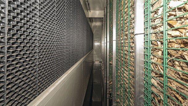 Après le nettoyage humide, l'air est transporté à travers la paroi à biofiltre.