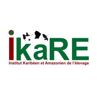 Institut Karibéen et Amazonien de l